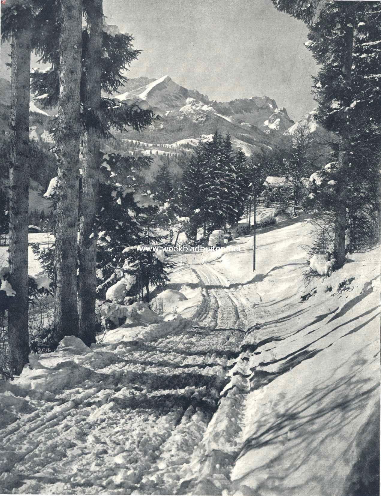 Winter in het bergland. Boschweg bij Partenkirchen